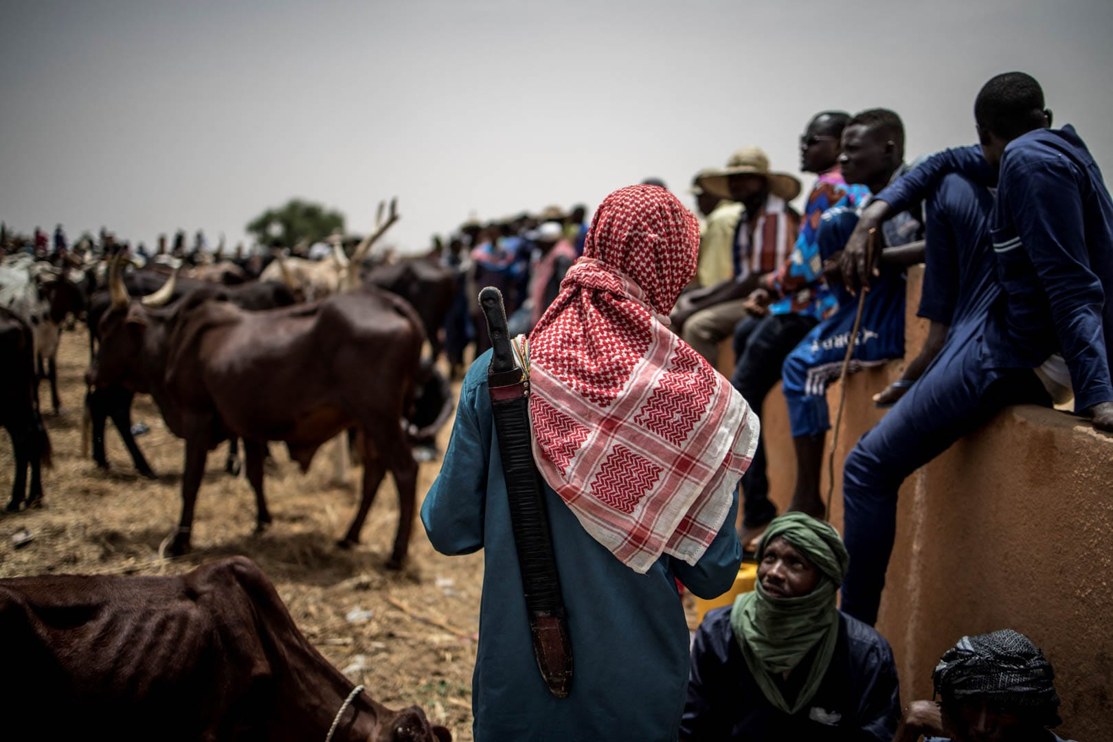 South-western Niger: Preventing a New Insurrection