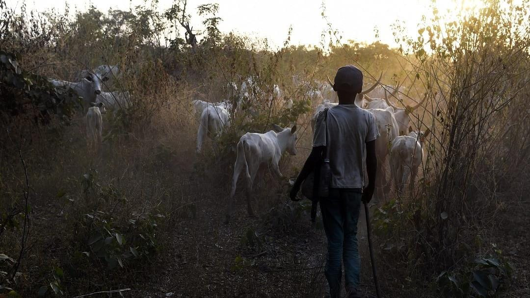 Image result for Mali: U.N. calls for inquiry as death toll in Farmers-Herders clash rises to 153